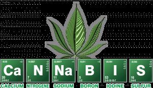 south carolina marijuana